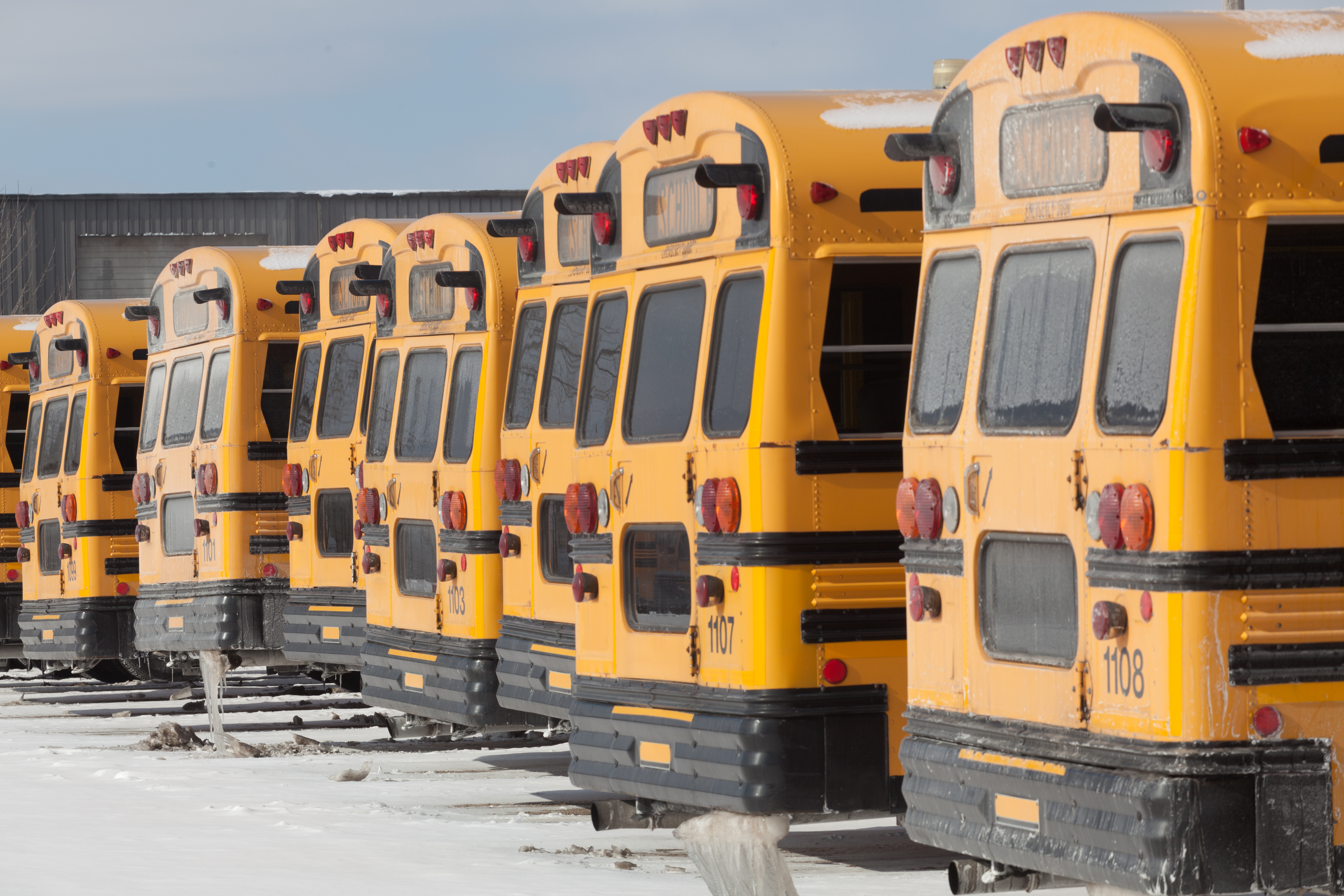 American yellow style school buses in winter