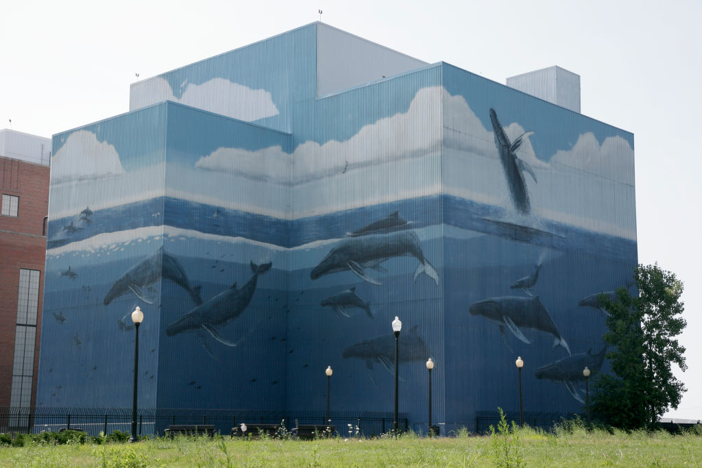 A whale mural on the Public Power Generating Station.