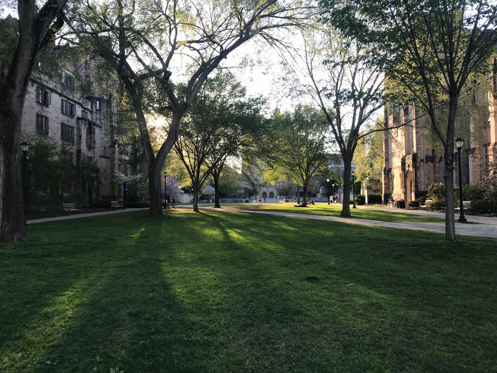 Yale rescinds student's admission in wake of national bribery scandal