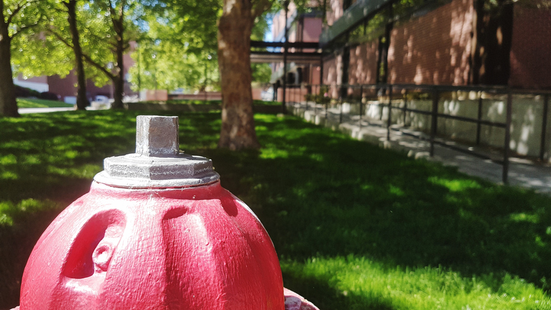 Close-Up Of Fire Hydrant In Park