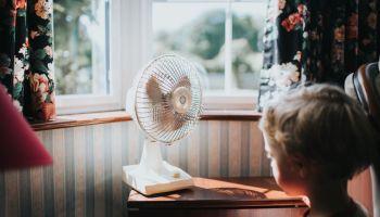 Little Boy looking at a fan