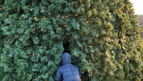 Rear View Of Man Wearing Jacket Standing By Christmas Tree