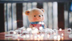 Teddy Bear On Table