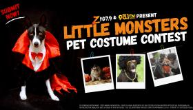 Little Monsters Pet Halloween Costume Contest