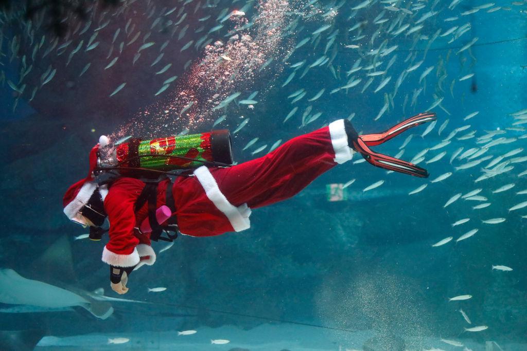 Santa Under Water Show
